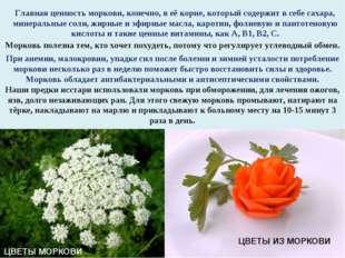 Главная ценность моркови, конечно, в её корне, который содержит в себе сахара