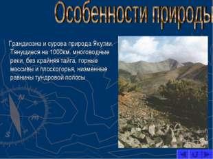 Грандиозна и сурова природа Якутии. Тянущиеся на 1000км. многоводные реки, б
