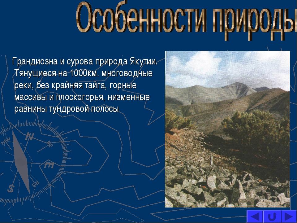 Грандиозна и сурова природа Якутии. Тянущиеся на 1000км. многоводные реки, б...