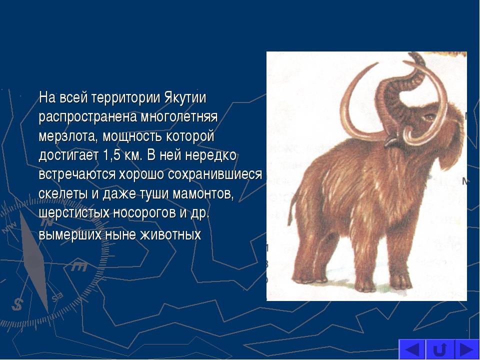 На всей территории Якутии распространена многолетняя мерзлота, мощность кото...