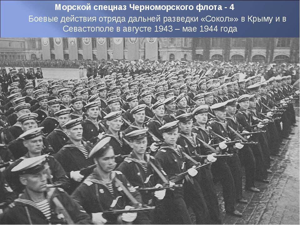Морской спецназ Черноморского флота - 4 Боевые действия отряда дальней развед...