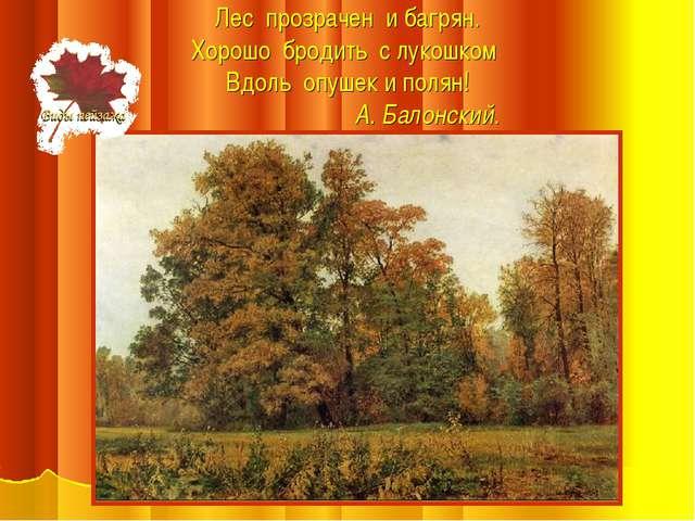 Лес прозрачен и багрян. Хорошо бродить с лукошком Вдоль опушек и полян! А. Ба...
