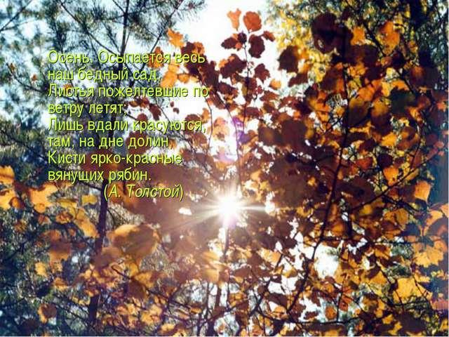 Осень. Осыпается весь наш бедный сад, Листья пожелтевшие по ветру летят; Лиш...