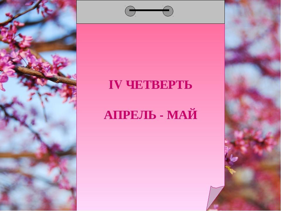 IV ЧЕТВЕРТЬ АПРЕЛЬ - МАЙ