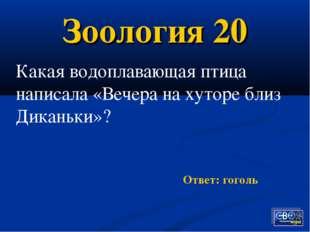 Зоология 20 Ответ: гоголь Какая водоплавающая птица написала «Вечера на хутор