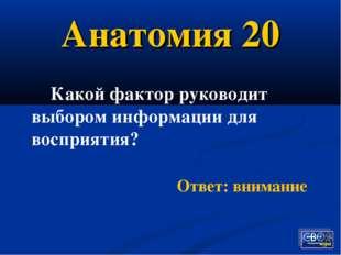 Анатомия 20 Какой фактор руководит выбором информации для восприятия? Ответ: