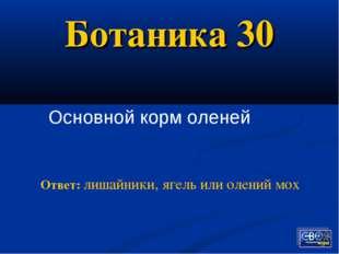 Ботаника 30 Основной корм оленей Ответ: лишайники, ягель или олений мох