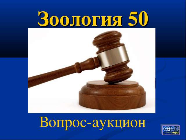 Зоология 50 Вопрос-аукцион