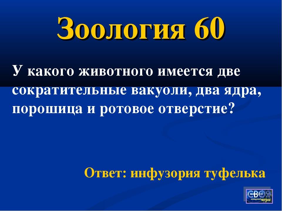 Зоология 60 Ответ: инфузория туфелька У какого животного имеется две сократит...