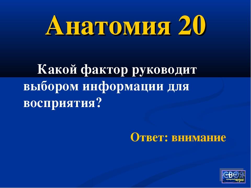 Анатомия 20 Какой фактор руководит выбором информации для восприятия? Ответ:...