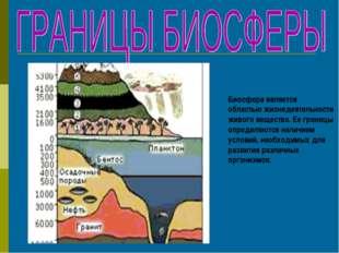 Биосфера является областью жизнедеятельности живого вещества. Ее границы опр