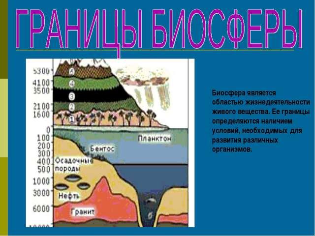 Биосфера является областью жизнедеятельности живого вещества. Ее границы опр...