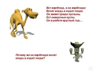 Почему же на верблюде возят кладь и ездят люди? Вот верблюд, а на верблюде В