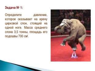 Задача № 1: Определите давление, которое оказывает на арену цирковой слон, ст