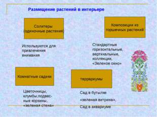 Размещение растений в интерьере Солитеры (одиночные растения) Комнатные садик
