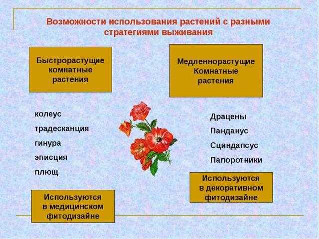 Возможности использования растений с разными стратегиями выживания Быстрораст...