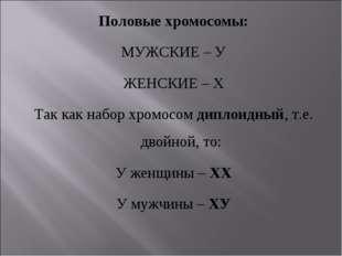 Половые хромосомы: МУЖСКИЕ – У ЖЕНСКИЕ – Х Так как набор хромосом диплоидный,