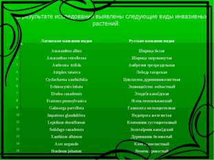 В результате исследований выявлены следующие виды инвазивных растений:  №Л