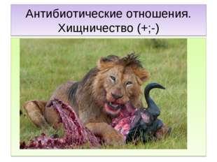 Антибиотические отношения. Хищничество (+;-)