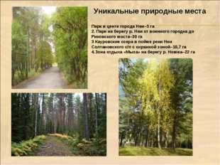 Уникальные природные места Парк в центе города Неи–3 га 2. Парк на берегу р.