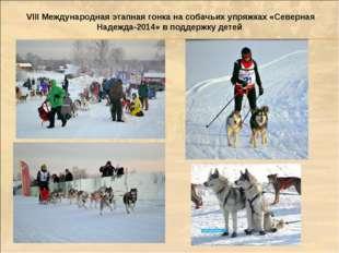 VIII Международная этапная гонка на собачьих упряжках «Северная Надежда-2014»