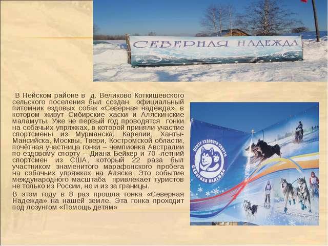 В Нейском районе в д. Великово Коткишевского сельского поселения был создан...