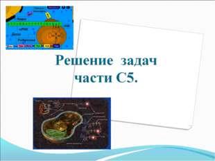 Кондратьева Е.М.