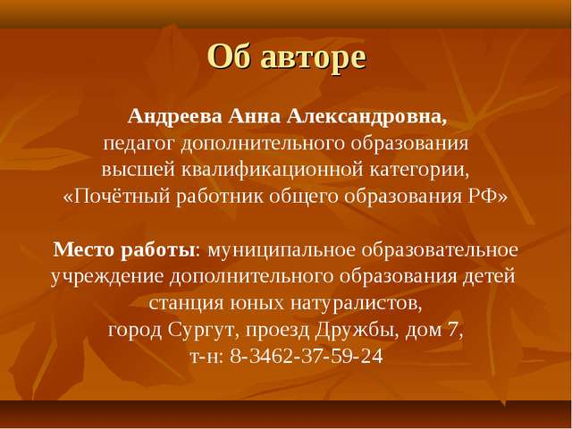 Об авторе Андреева Анна Александровна, педагог дополнительного образования вы...