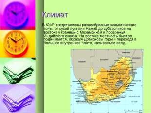 Климат В ЮАР представлены разнообразные климатические зоны, от сухой пустыни