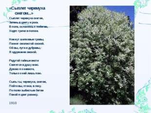 «Сыплет черемуха снегом...» Сыплет черемуха снегом, Зелень в цвету и росе. В