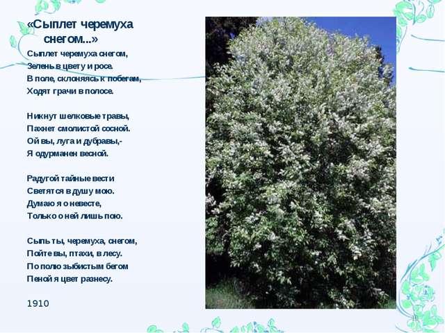 «Сыплет черемуха снегом...» Сыплет черемуха снегом, Зелень в цвету и росе. В...