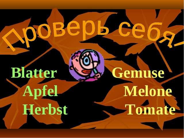 Blatter Gemuse Apfel Melone Herbst Tomate