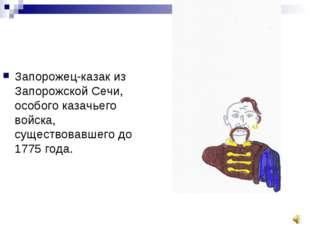 Запорожец-казак из Запорожской Сечи, особого казачьего войска, существовавшег