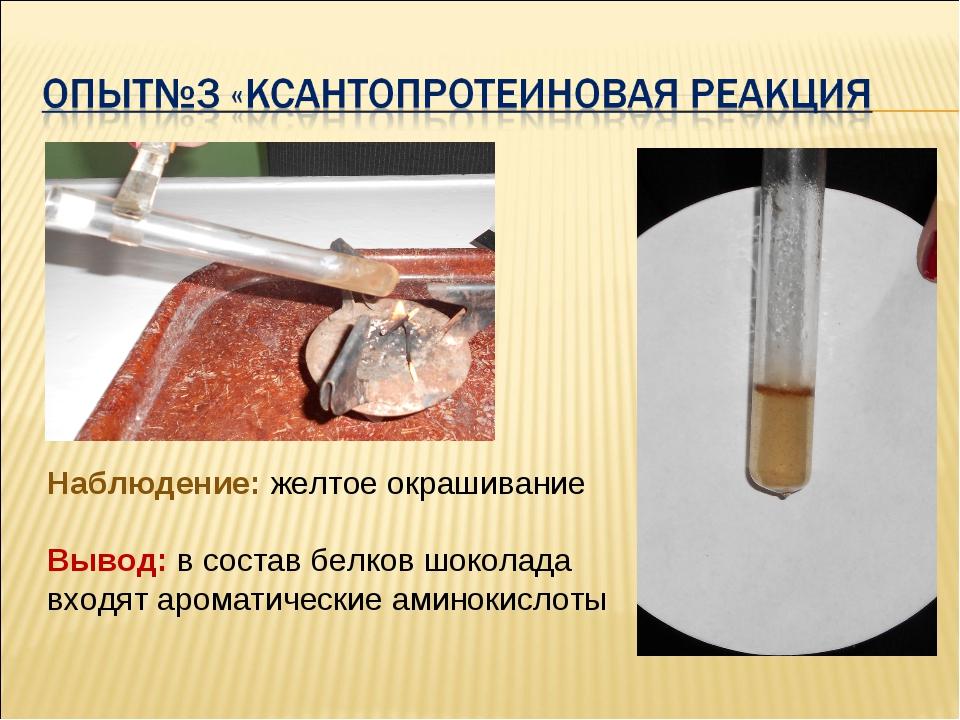Наблюдение: желтое окрашивание Вывод: в состав белков шоколада входят аромати...