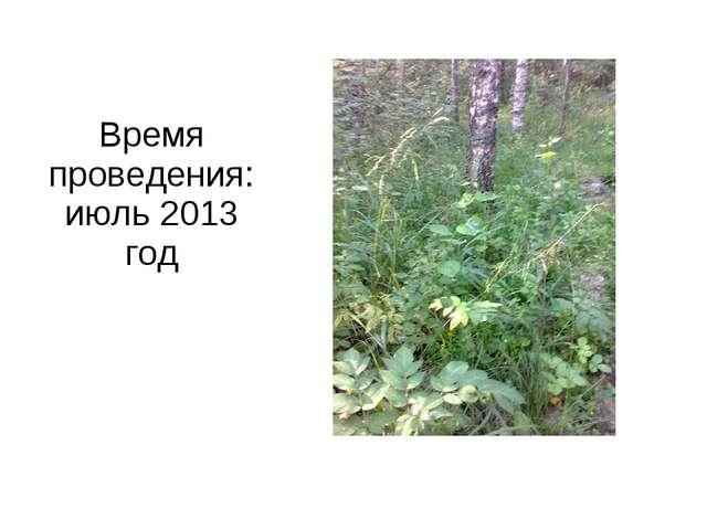 Время проведения: июль 2013 год