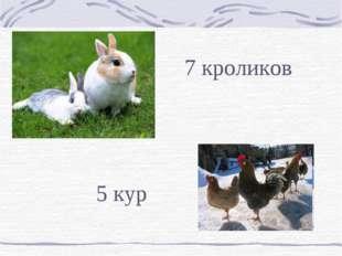 7 кроликов 5 кур