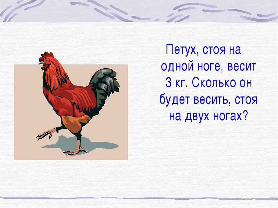 Петух, стоя на одной ноге, весит 3 кг. Сколько он будет весить, стоя на двух...