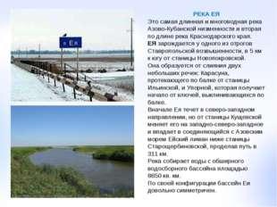 РЕКА ЕЯ Это самая длинная и многоводная река Азово-Кубанской низменности и вт