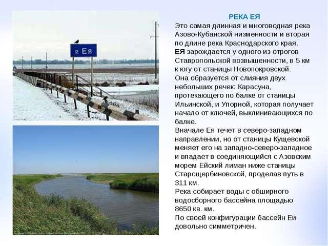 РЕКА ЕЯ Это самая длинная и многоводная река Азово-Кубанской низменности и вт...