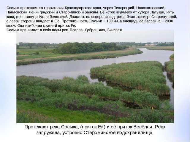Протекают река Сосыка, (приток Еи) и её приток Весёлая. Река запружена, устро...