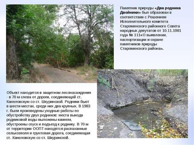 Памятник природы «Два родника Двойники» был образован в соответствии с Решени...