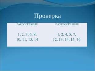Проверка РАКООБРАЗНЫЕПАУКООБРАЗНЫЕ 1, 2, 3, 6, 8, 10, 11, 13, 141, 2, 4, 5
