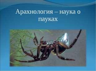 Арахнология – наука о пауках