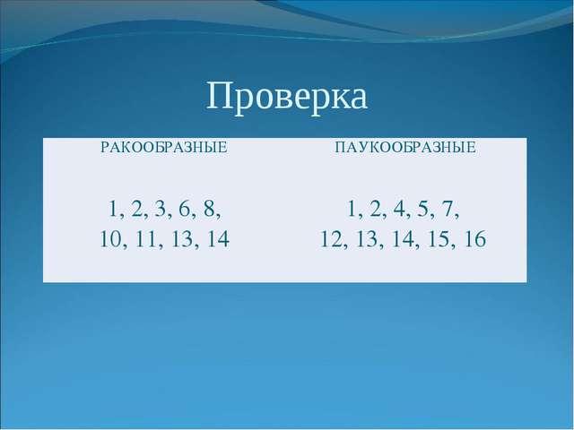 Проверка РАКООБРАЗНЫЕПАУКООБРАЗНЫЕ 1, 2, 3, 6, 8, 10, 11, 13, 141, 2, 4, 5...