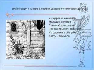 Иллюстрация к «Сказке о мертвой царевне и о семи богатырях И к царевне наливн