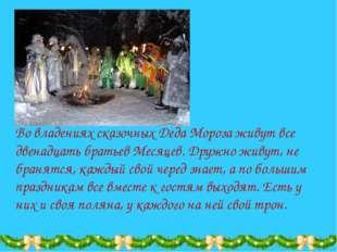 Во владениях сказочных Деда Мороза живут все двенадцать братьев Месяцев. Друж