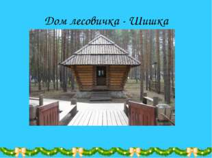 Дом лесовичка - Шишка