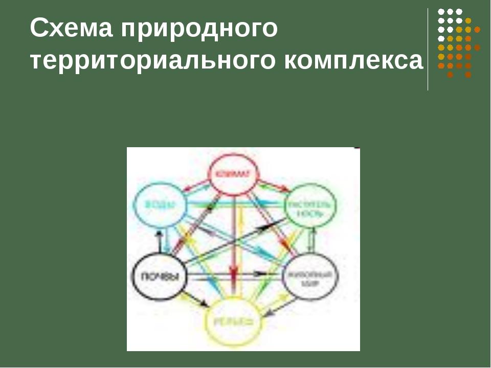 Схема природного территориального комплекса