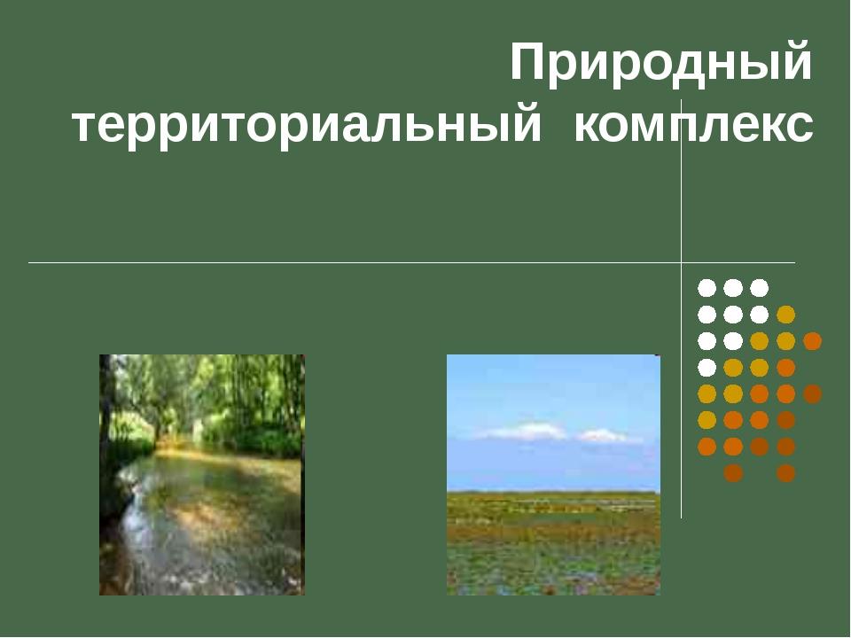 Природный территориальный комплекс