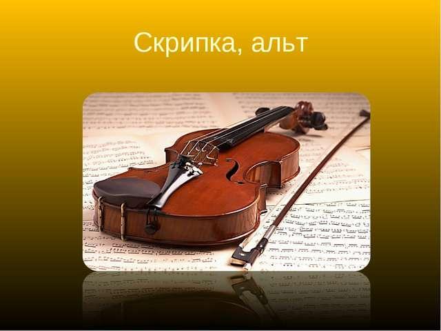 Скрипка, альт